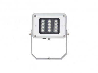 Raytec SPARTAN FL12 Floodlight Industrial